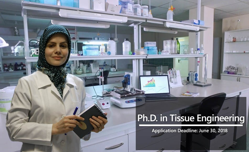 Ph.D. in Tissue Engineering