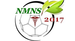Second Nanomedicine and Nanosafety Conference (NMNS 2017)
